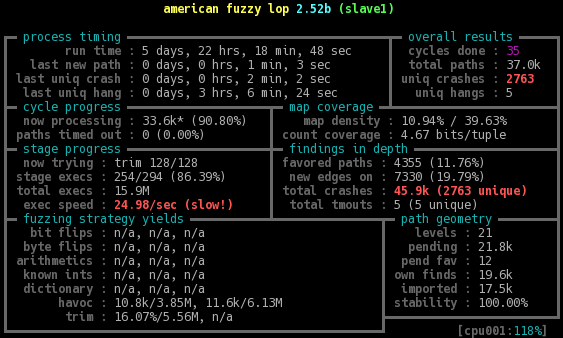 Screenshot of one fuzzer slave